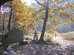 嵐山渓谷の与謝野晶子歌碑:嵐山町